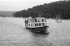 The Curlew near Church Point, Pittwater, 1983