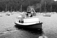 The Elvina, Pittwater, 1983
