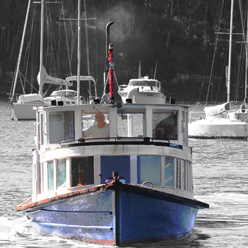 The Elvina at Christmas, Church Point Ferry Service